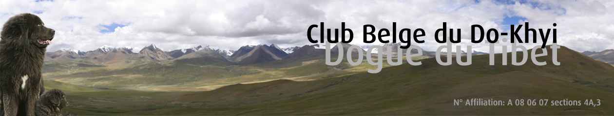 CBDK – Club Belge du Do-Khyi – dogue du tibet